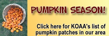 Click here for Pumpkin Patches in CT