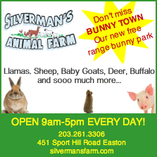 Silverman's Farm in Easton has great farm activities!
