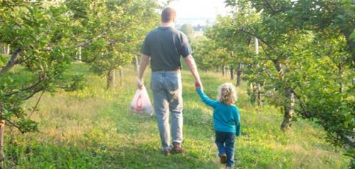 Pick apples with your kids in Connecticut